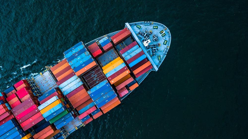 Compra de container: veja a importância da placa CSC